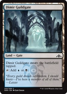 Dimir Guildgate <245> [GRN]