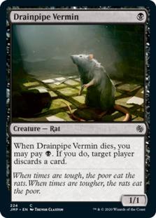 Drainpipe Vermin