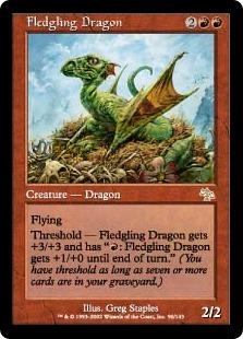Fledgling Dragon
