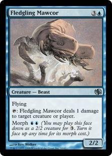 Fledgling Mawcor