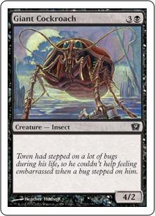Giant Cockroach