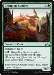 Grappling Sundew