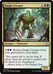Jungle Creeper