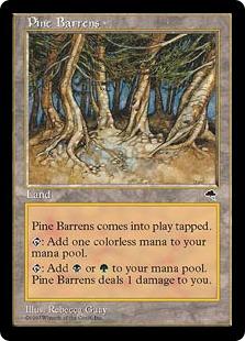 Pine Barrens