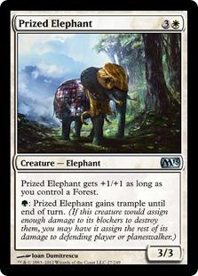 Prized Elephant