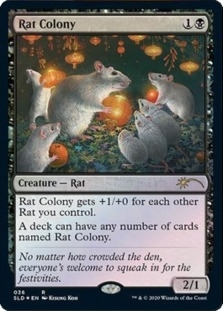 Rat Colony
