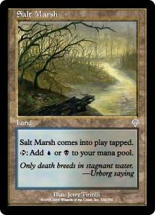 Salt Marsh [IN]