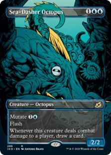 Sea-Dasher Octopus