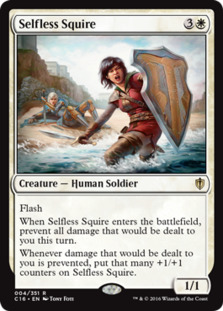 Selfless Squire