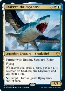 Shabraz, the Skyshark