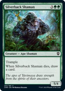 Silverback Shaman [CMR] (F)