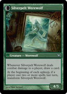Silverpelt Werewolf