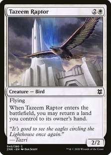 Tazeem Raptor