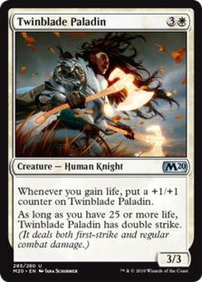 Twinblade Paladin