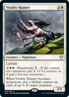 Vitality Hunter