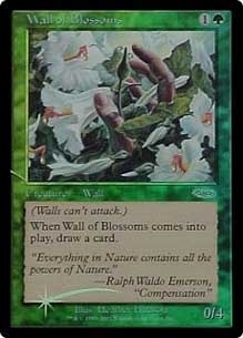 Wall of Blossoms [PRM-FNM] (F)