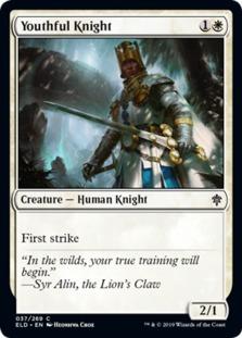 Youthful Knight
