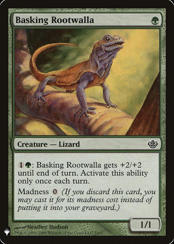 Basking Rootwalla [MB1]