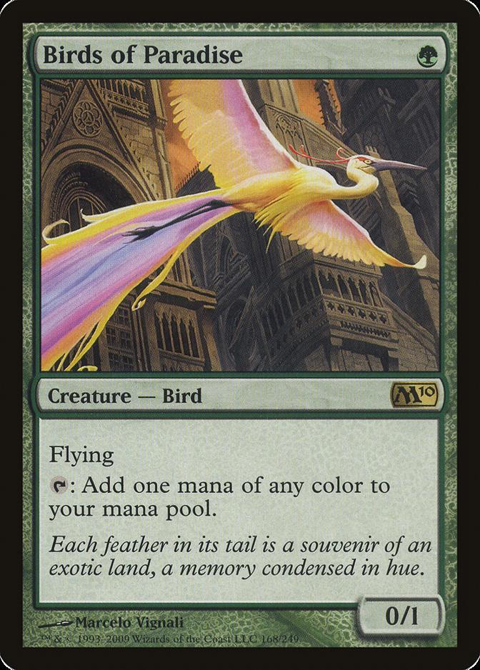 Birds of Paradise [M10]