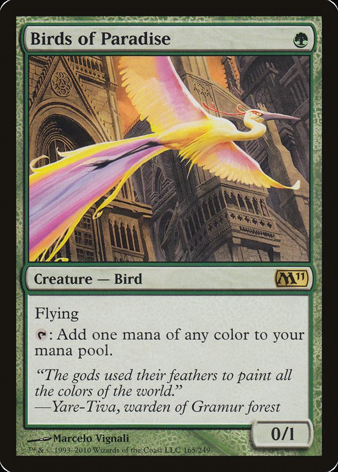 Birds of Paradise [M11]