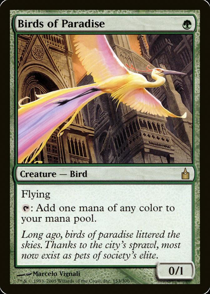 Birds of Paradise [RAV]