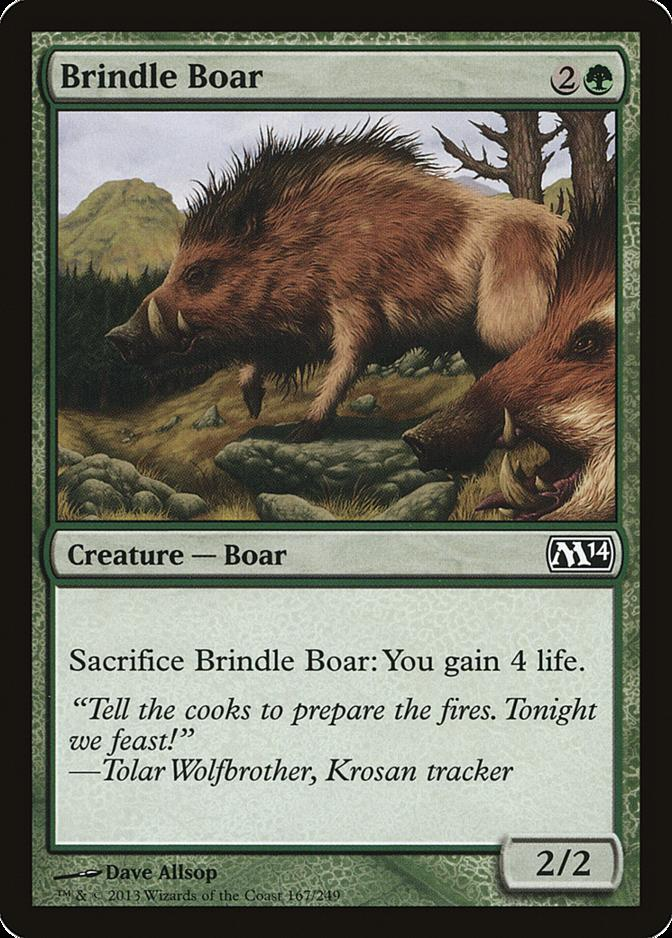 Brindle Boar [M14]