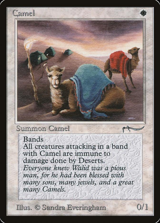 Camel [ARN]