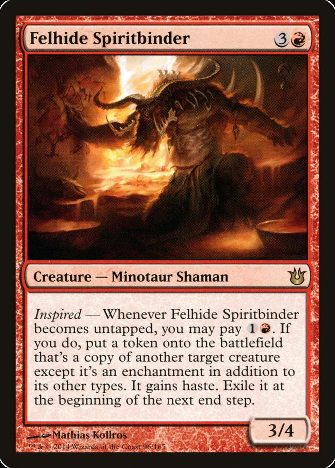 Felhide Spiritbinder [BNG]