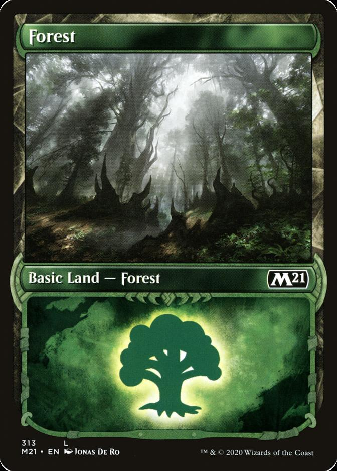 Forest <313> [PM21]