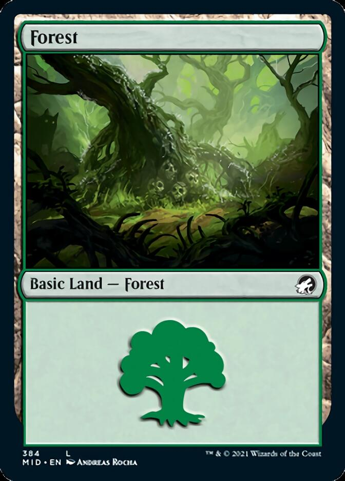 Forest <384> [MID]
