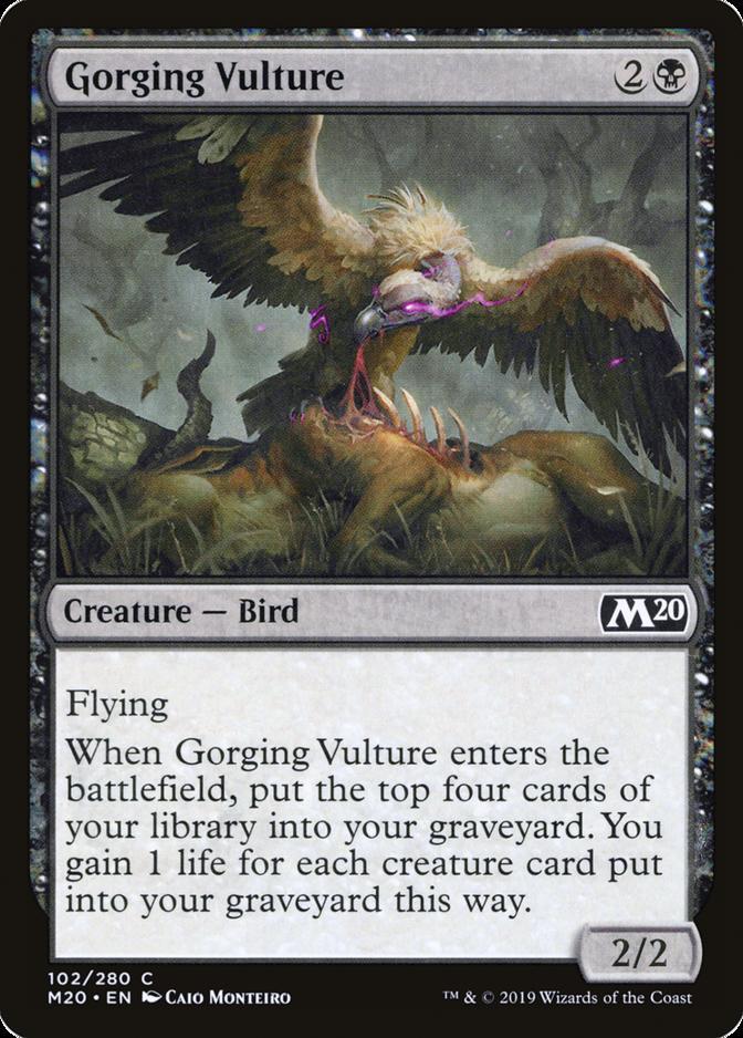 Gorging Vulture [M20]