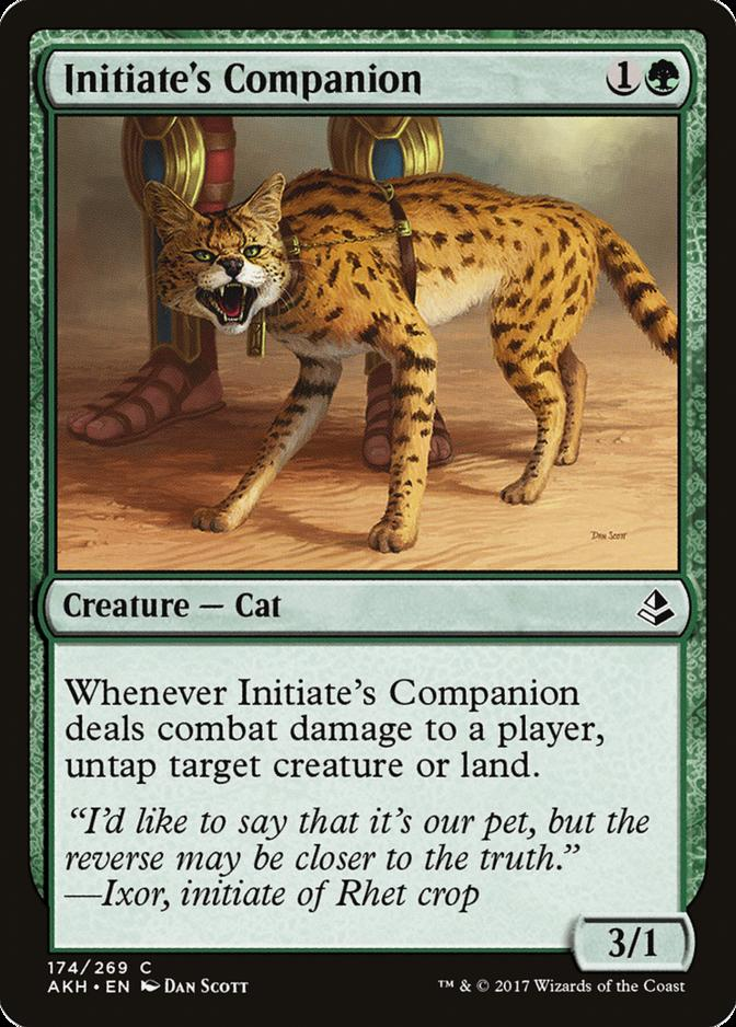 Initiate's Companion [AKH]