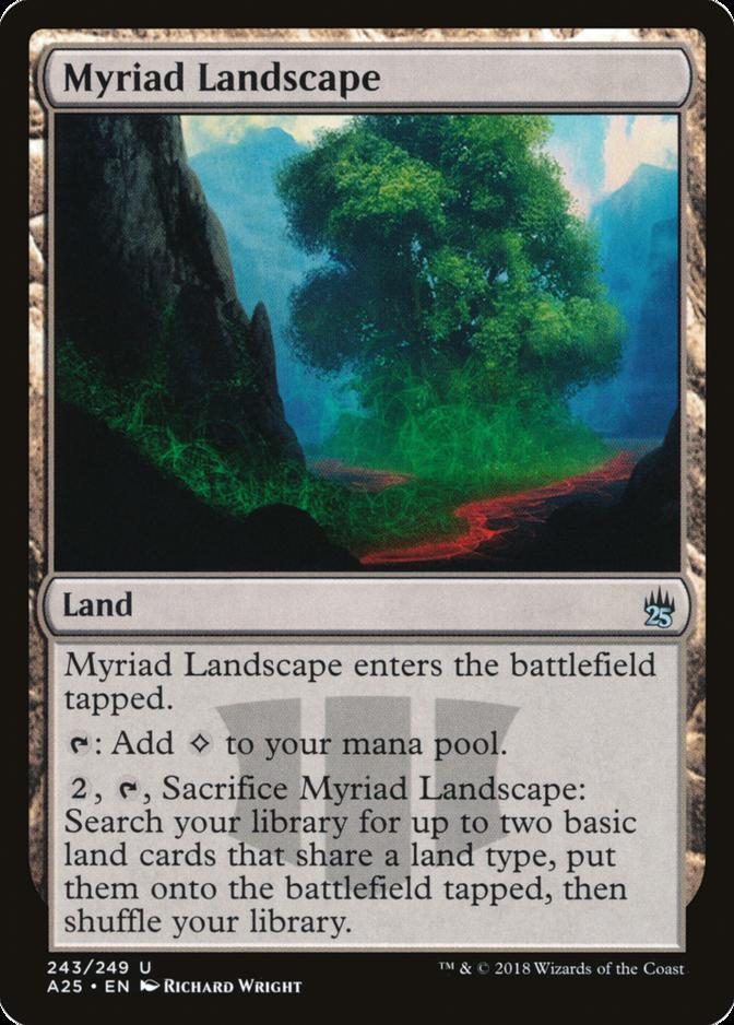 Myriad Landscape [A25]