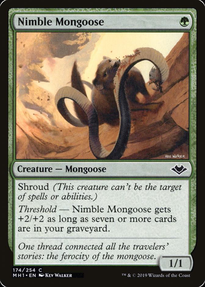 Nimble Mongoose [MH1]