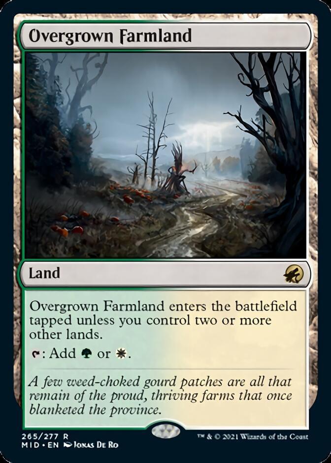 Overgrown Farmland [MID]
