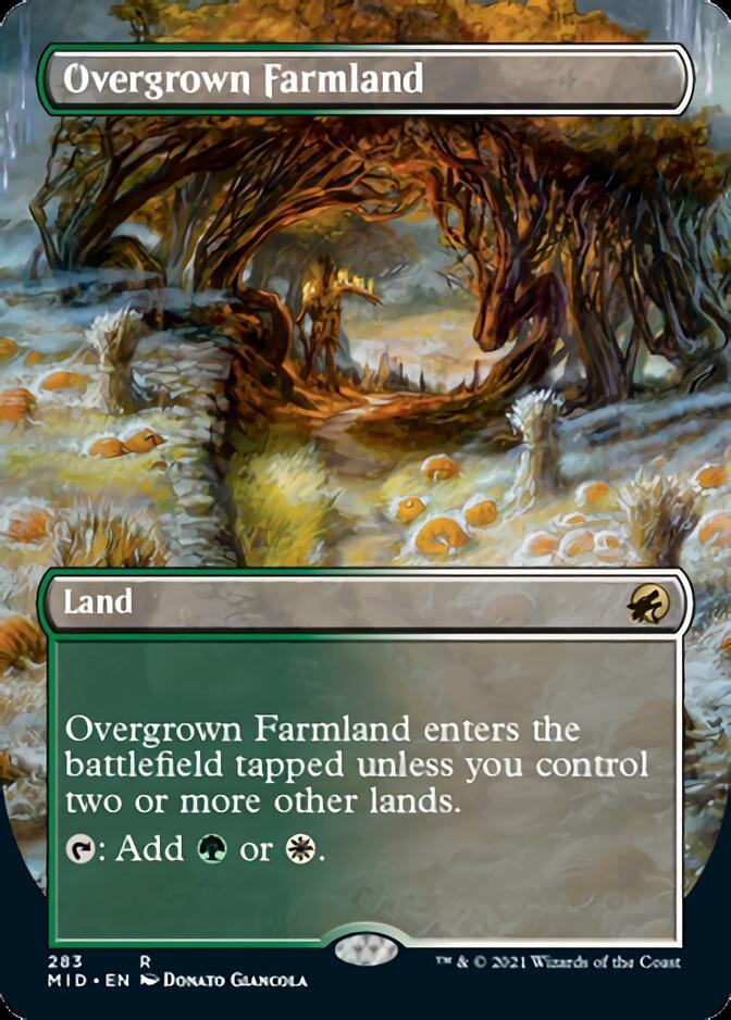 Overgrown Farmland <borderless> [MID]