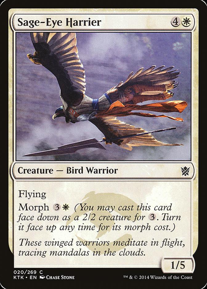 Sage-Eye Harrier [KTK]