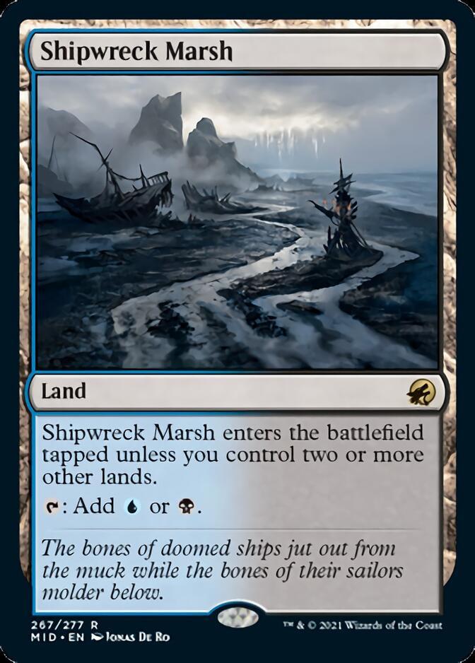 Shipwreck Marsh [MID]