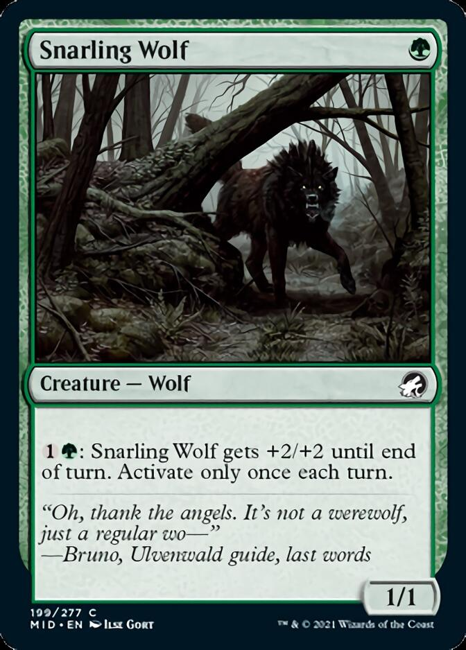 Snarling Wolf [MID]
