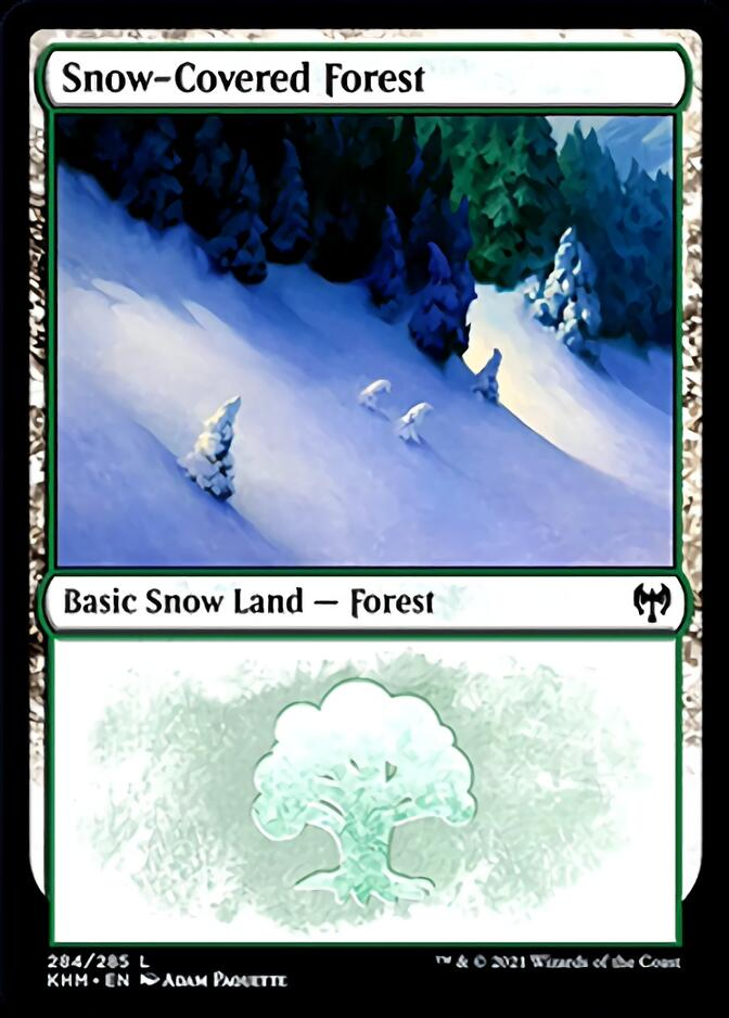 Snow-Covered Forest <284> [KHM]