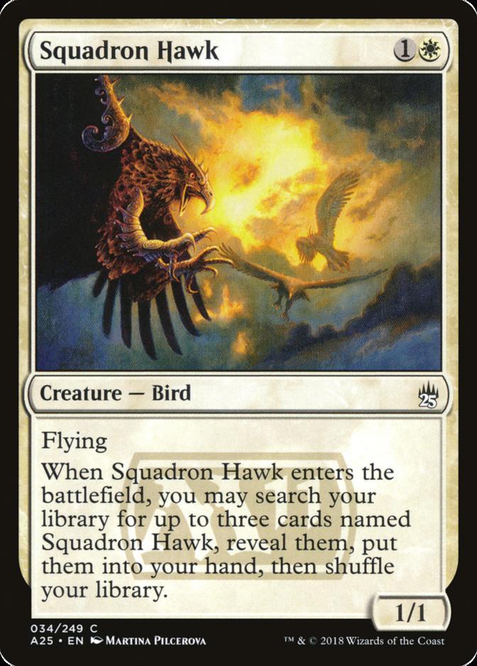 Squadron Hawk [A25]