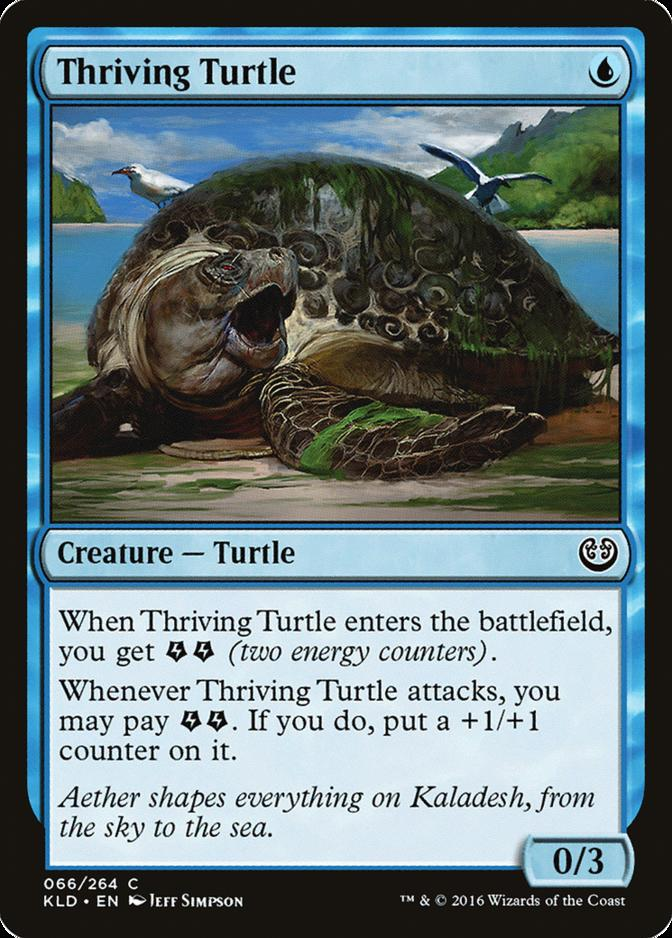 Thriving Turtle [KLD]