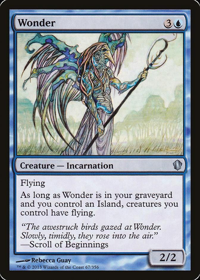 Wonder [C13]